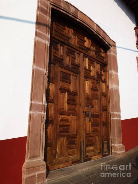 Photograph - Mexican Door 61 by Xueling Zou