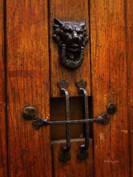 Photograph - Mexican Door Decor 1  by Xueling Zou