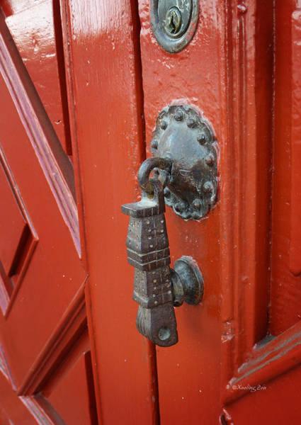 Photograph - Mexican Door Decor 6  by Xueling Zou