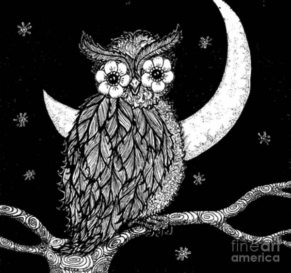 Nocturnal Drawing - Midnight Owl by Barbra Drasby