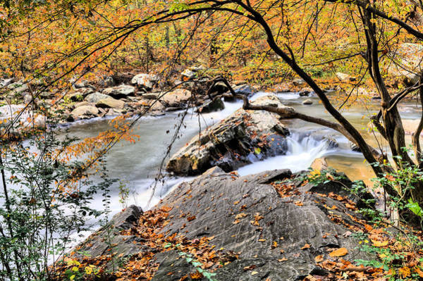Photograph - Mill Creek  by JC Findley