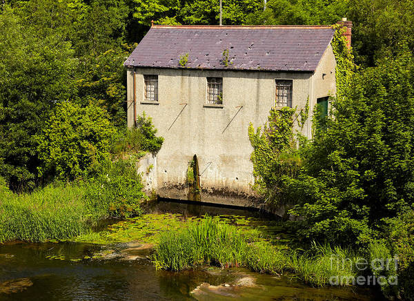 Wall Art - Photograph - Mill On Liffey River by Gabriela Insuratelu