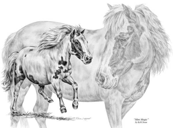 Drawing - Mini Magic - Miniature Horse Art Print by Kelli Swan