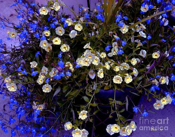 Digital Art - Mini Petunias by Dale   Ford