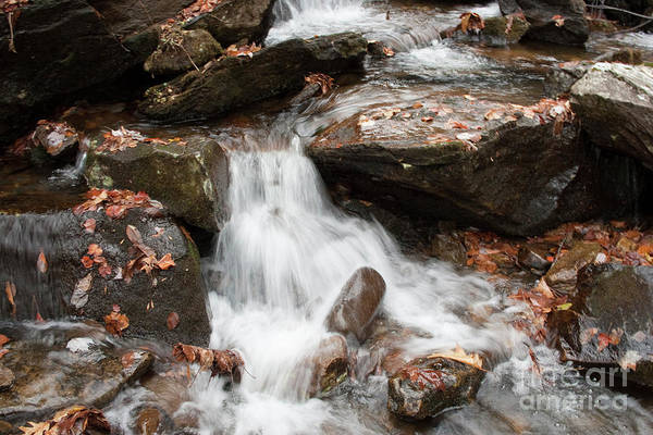 Photograph - Mini Waterfall by Michael Waters