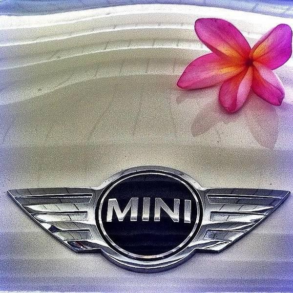 Bmw Photograph - #minicooper #hawaii #plumeria #flower by Debi Tenney