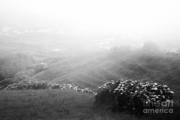 Acores Photograph - Minimalist Landscape by Gaspar Avila