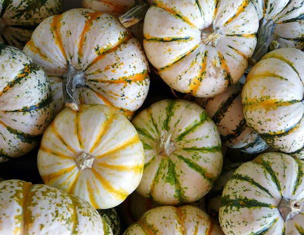 Photograph - Mint Pumpkins by Jeff Lowe