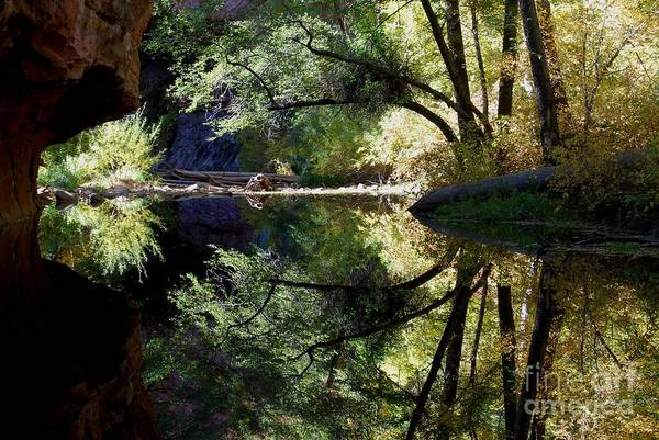 Photograph - Mirror Reflection by Tam Ryan
