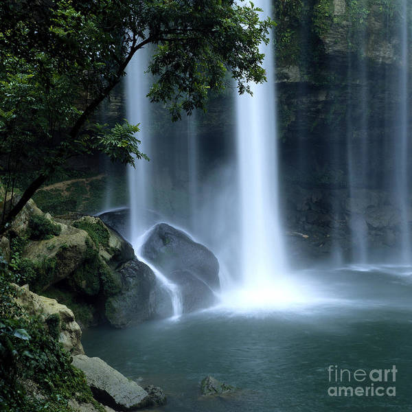 Photograph - Misol-ha Waterfall by Carolyn Brown and Photo Researchers