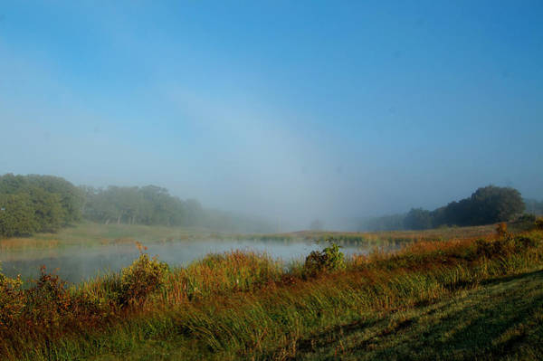 Ardmore Photograph - Mist On The Pond by Cindy Rubin
