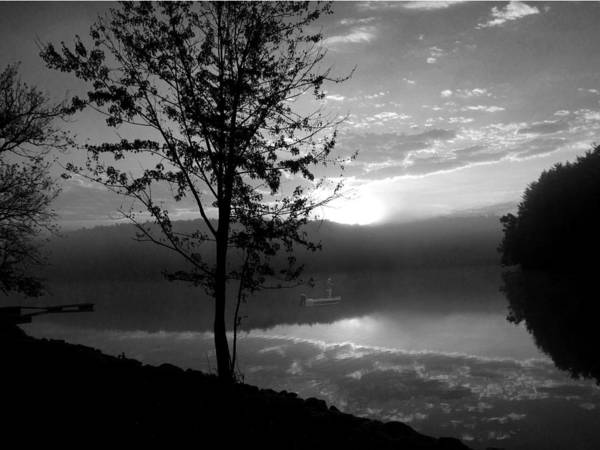 Photograph - Misty Reflections Bw by David Dehner