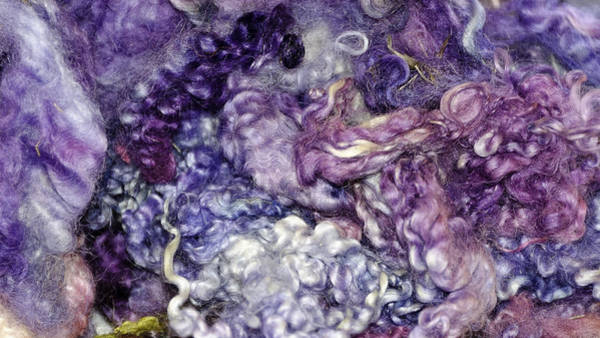 Little Things Photograph - Mixed Bag Of Dyed Wool by LeeAnn McLaneGoetz McLaneGoetzStudioLLCcom