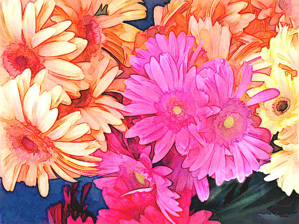 Gerbera Painting - Mixed Pink And Yellow Gerber Daisies by Elaine Plesser