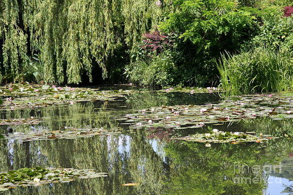 Claude Monet Photograph - Monets Lilypond - Giverny by Christiane Schulze Art And Photography