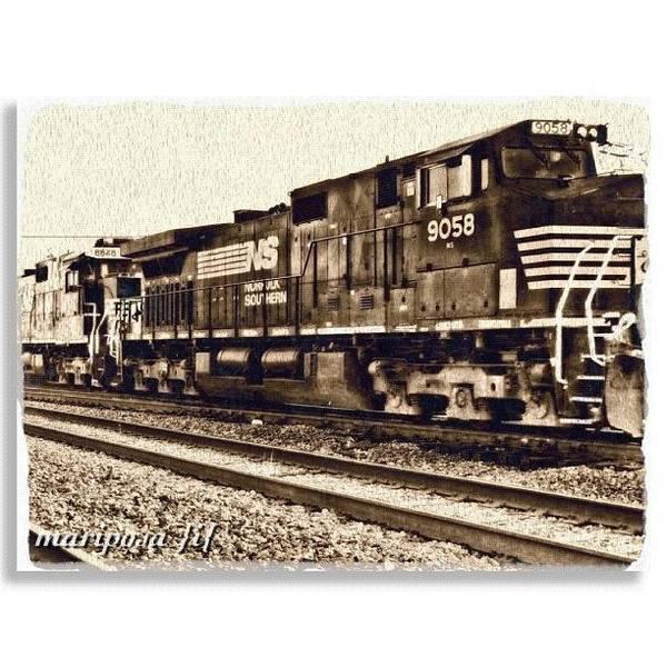 Edit Photograph - Monochrome Rail by Mari Posa