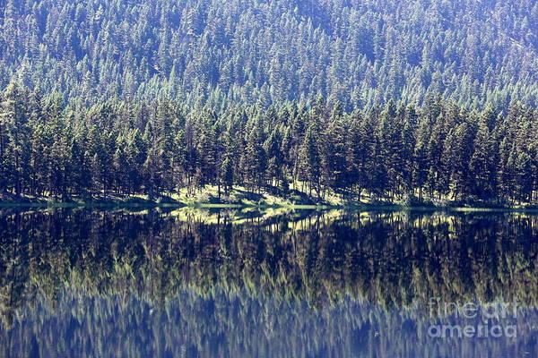 Photograph - Montana Lake Reflection by Carol Groenen