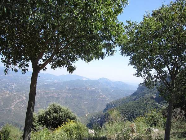 Photograph - Montserrat Mountain Double Tree View As Far As Eye Can See At High Altitude In Spain Near Barcelona by John Shiron