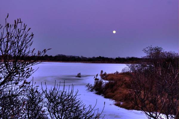 Photograph - Moon And Snow Pond by Tom Singleton