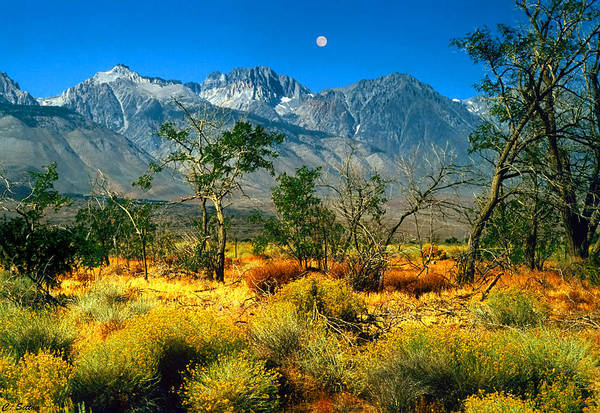 Photograph - Moon Over Mt. Whitney by C Sitton