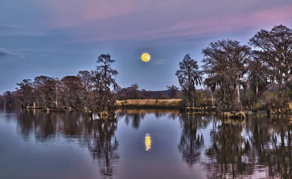 Photograph - Moon Over The Marsh by Mike Covington