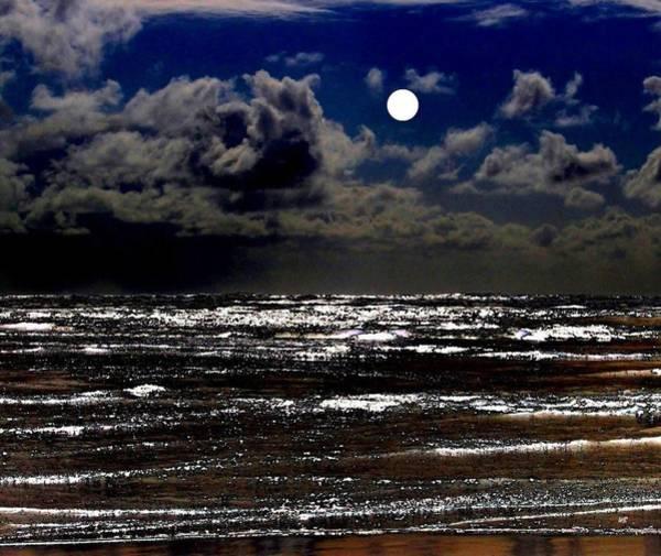 Oregon Coast Digital Art - Moon Over The Pacific by Will Borden
