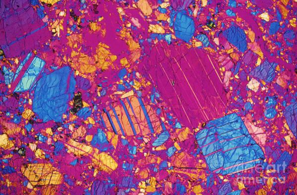 Photograph - Moon Rock, Transmitted Light Micrograph by Michael W Davidson