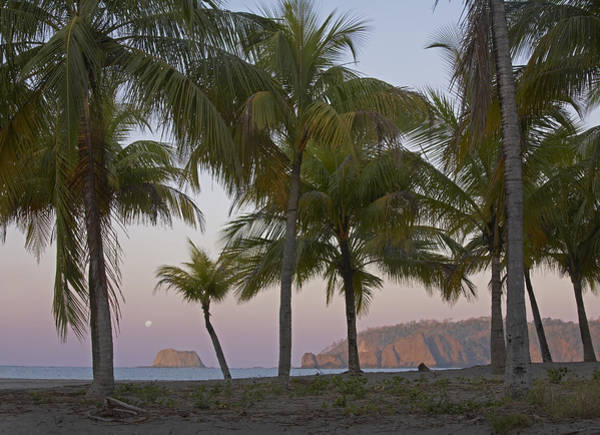 Carrillo Photograph - Moon Setting Playa Carillo Guanacaste by Tim Fitzharris