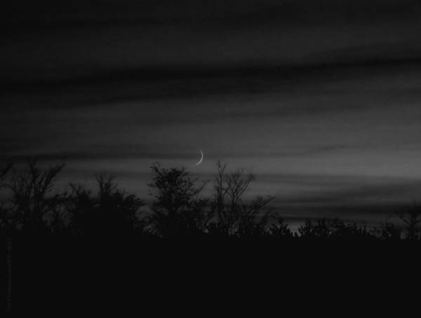 Sliver Photograph - Moon Sliver by Mimulux patricia No