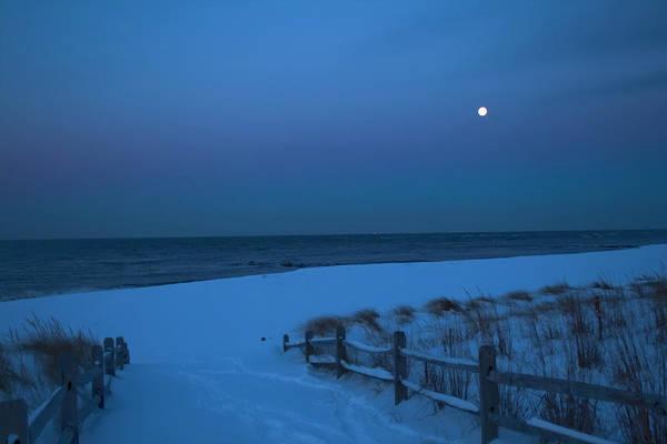 Photograph - Moonlit Beach Path by Tom Singleton