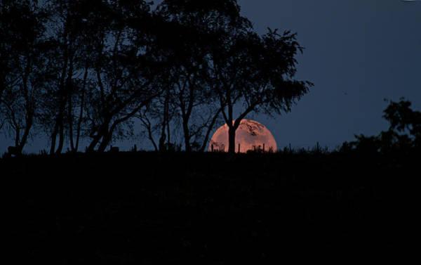 Moonscape Photograph - Moonscape by Betsy Knapp