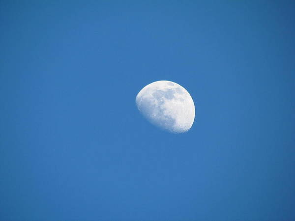 Photograph - Moonset by Tony and Kristi Middleton