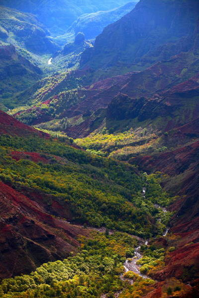 Waimea Canyon Photograph - Morning Waimea Canyon by Mike Reid