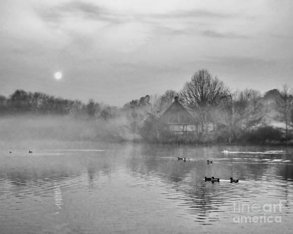 Photograph - Morning Fog And Moon by David Waldrop