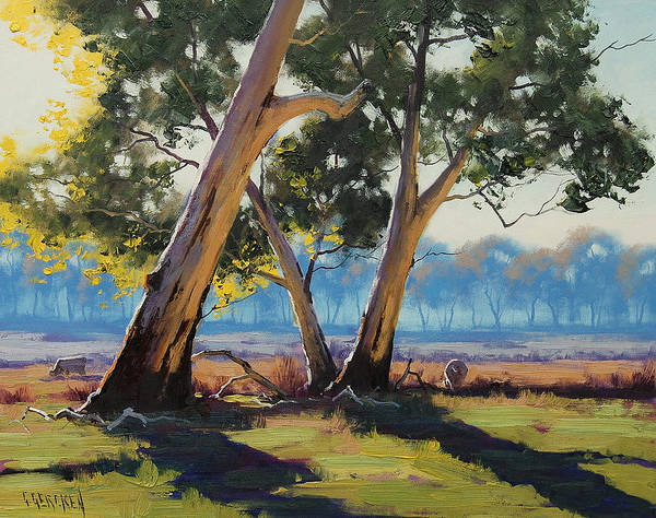Eucalyptus Wall Art - Painting - Morning Lit Gums by Graham Gercken