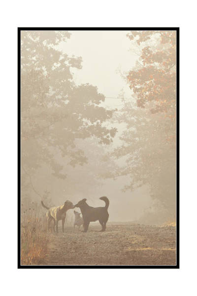 Morning Meeting Art Print