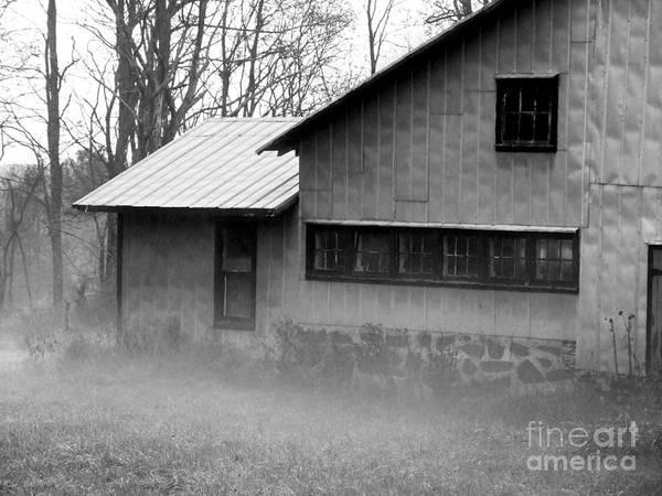Photograph - Morning Mist Photograph by Kristen Fox