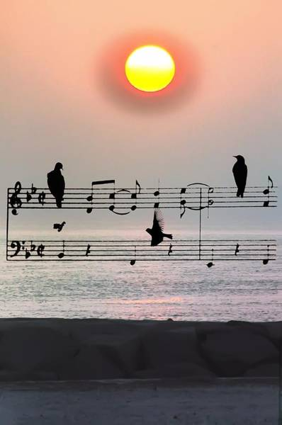 Morning Song Wall Art - Photograph - Morning Song by Bill Cannon