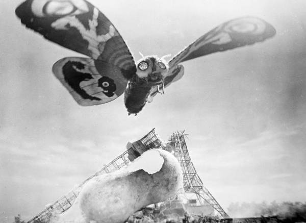 Photograph - Mothra, 1961 by Granger