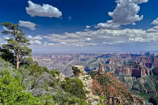 Photograph - Mount Hayden From Point Imperial Grand Canyon by Gary Eason