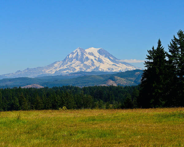 Photograph - Mount Rainier by Greg Norrell