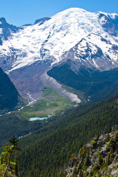Photograph - Mount Rainier Xi by David Patterson