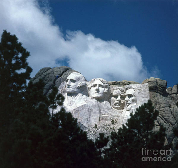 Photograph - Mount Rushmore by Photo Researchers Inc