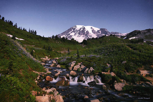 Wall Art - Photograph - Mountain By Moonlight by Winston Rockwell
