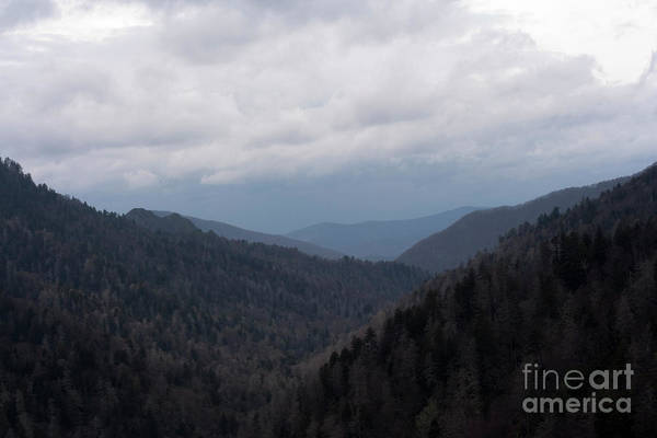 Photograph - Mountain Scenery by Michael Waters