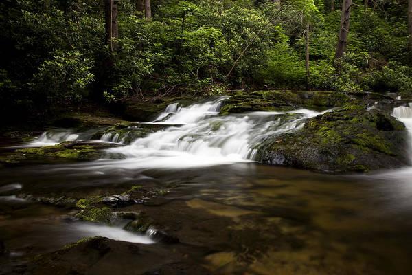 Photograph - Mountain Stream by Sara Hudock