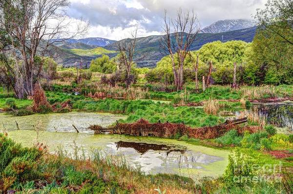 Heber Springs Photograph - Mountain Valley Marsh - Hdr by Gary Whitton