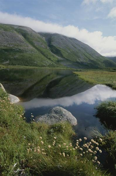 Gros Morne Photograph - Mountains And Clouds Are Reflected by Michael S. Lewis