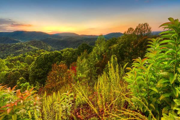 Boyd Photograph - Mountainside by Debra and Dave Vanderlaan