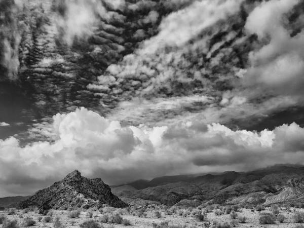 Rancho Mirage Photograph - Moving Through by Dominic Piperata
